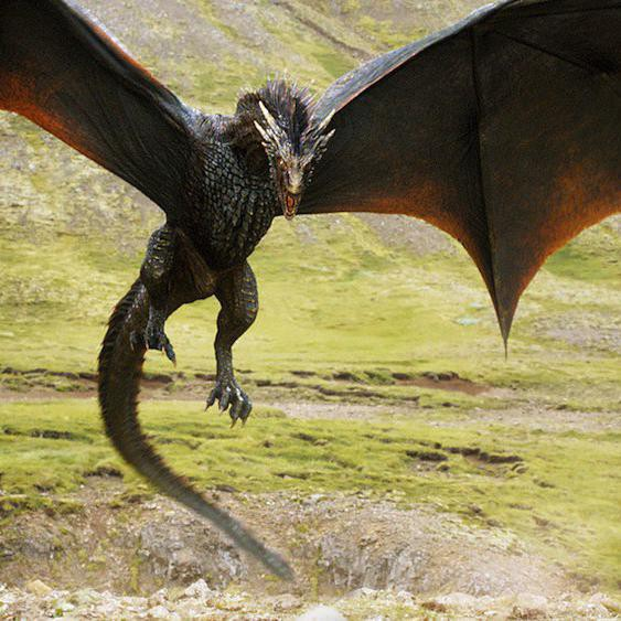 Dragons: A Brief History of the Mythical, Fire-Breathing Beasts