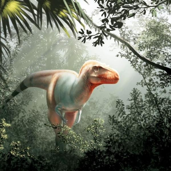 The 10 Coolest Dinosaur Findings of 2020